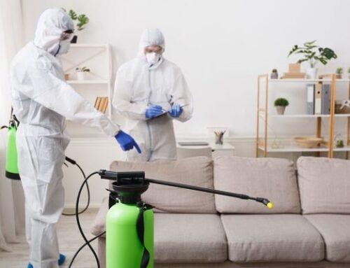 شركة تعقيم منازل فى ام القيوين |0547378799| تطهير فلل